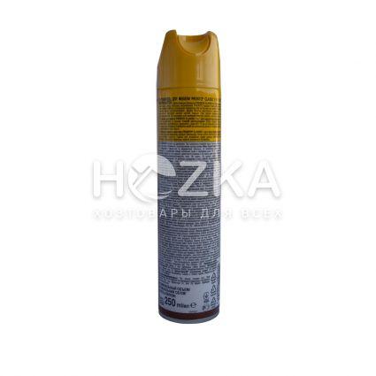 PRONTO аэрозольный Классик 250 мл - 2
