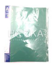 Папка с усами 4-151 с карманом  А4 на пружине